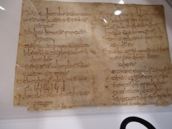 Newberry Case MS Medieval Fragment 1