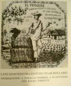 Ortiz. Fernando. Cuban counterpoint; tobacco and sugar.  Call number: Ayer 1105 .C85 077 1947