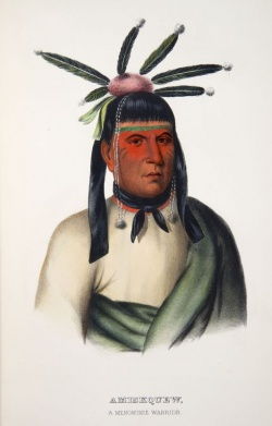 Thomas Loraine McKenney, Portrait of Amiskquew in History of the Indian Tribes of North America. Ayer folio E77 .M131 1858